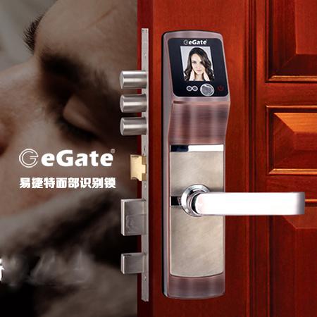 易捷特促销面部识别密码人脸识别智能锁 刷卡锁家装门锁非指纹锁